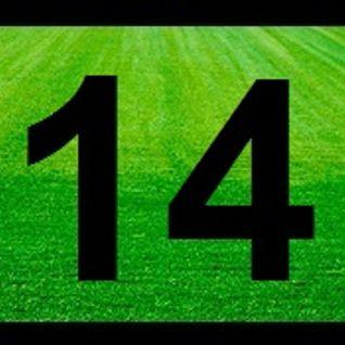 AFL Wrap Round 14
