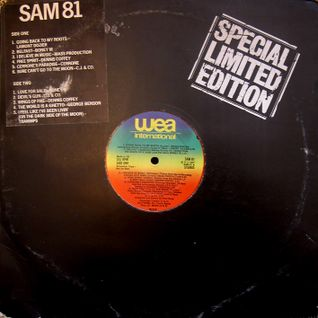 GREG WILSON PRESENTS THE ORIGINAL BRITISH MIXES - WEA DJ SAMPLER (SAM 81) 1977