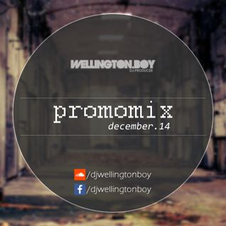 Wellington Boy - PROMOMIX (December 2014)
