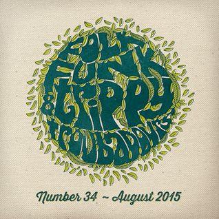 Folk Funk and Trippy Troubadours 34