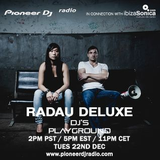 Radau Deluxe (December 2015) - Pioneer DJ's Playground
