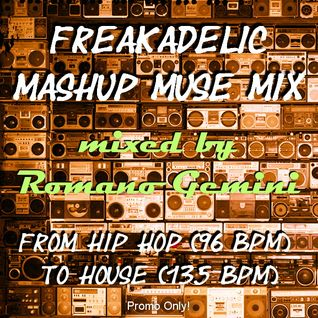 Freakadelic Mashup Muse Mix