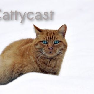 MANK - Cattycast