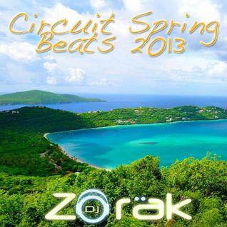 DJ ZORAK - CIRCUIT SPRING BEATS 2013 (MARZO)
