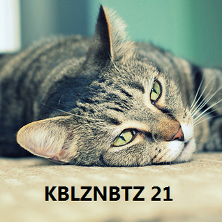 KBLZNBTZ 21