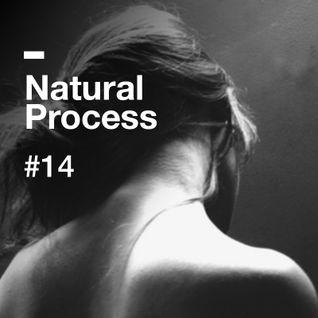 Natural Process #14