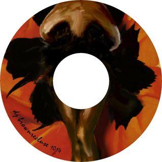 DJ BrownRecluse 1014 (Bonus Disc)