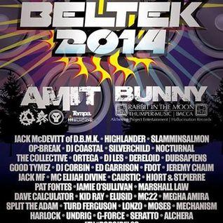 Ed Garrison - Live @ Beltek Festival 2014
