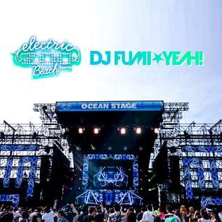 Electric Zoo Beach Tokyo 2016 DJ FUMI★YEAH! Setlist