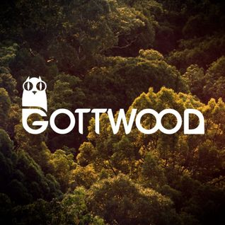 Gottwood Festival 2015 Competition Mix (Eshan and Omar's mix)