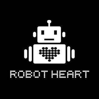 Thugfucker - Live @ Robot Heart Burning Man 2012