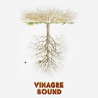 Vinagre Sound - New Roots Selection