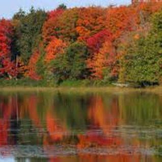 Chilled Autumn Days