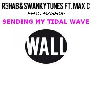 """chuckie vs sub focus vs r3hab"" Sending My Tidal Wave (Fedo mashup)"