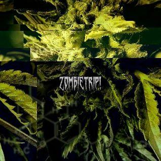 Carlos S. AKA Zombietrip! - PODCAST WINTER INSIDE (C21H30O2)