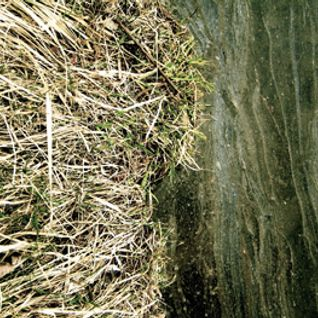 Benoit Pioulard - PMT#5 Rain In May's Drain Basin