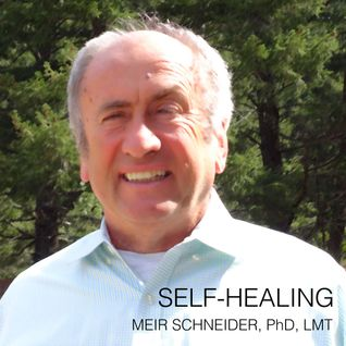 Meir's Monday Lecture: Excerpts of Self-Healing and Nature