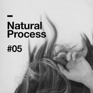 Natural Process #05