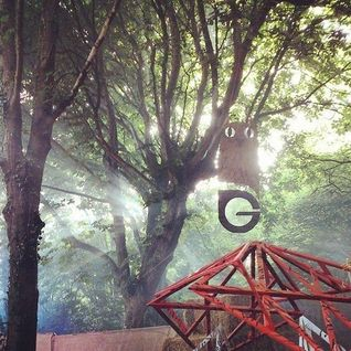 Luke Warren - Live at Gottwood Festival - June 2014