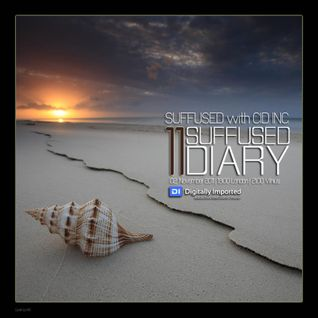 Suffused Diary 011 (November 2011) guest Cid Inc
