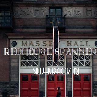 spannered redhouse finale silverback dj