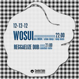 wosui live at Cannibal Radio dec2012