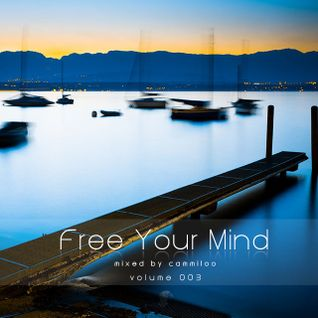 Free Your Mind vol.003 - mixed by cammiloo