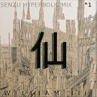 SENZU HYPERBOLIC MIX VOLUME °1 - WILL THE THIRD