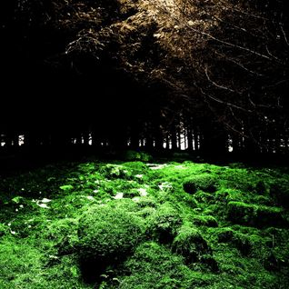 Deep Forest Vs Mike Oldfield