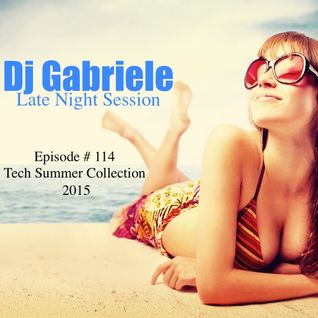 Episode # 114 Tech Collection Summer 2015 by Dj Gabriele Late Night Session