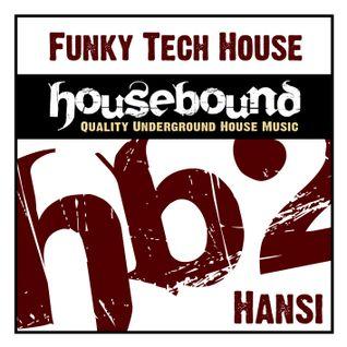 Hansi - HouseBound 2