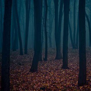Autumn Darkness