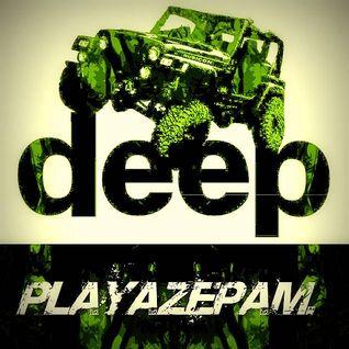 Playazepam - Dubwise 2016