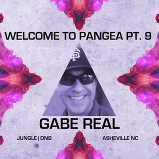 Gabe Real - Real Love 2