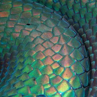 Snakes #22 - 16/03/12 - on RadioBasePopolare