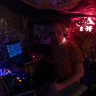 dj bliepertrollic kabouterhuisje ruigoord 2-4-16 (full circle party)