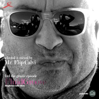 FluidGroove | deep radio show| feel the groove ep. | Mr Flip Calvi