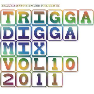 TRIGGA DIGGA MIX VOL. 10