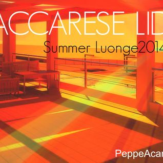 DGroove.Vdj MACCARESE LIDO SummerLounge 2014 Vol2 (PeppeAcamporaMix)ROMA