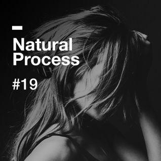 Natural Process #19