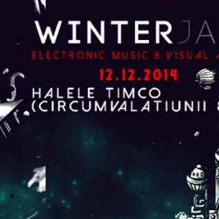 Ducu - Promo Mix for Winter Jam 2014
