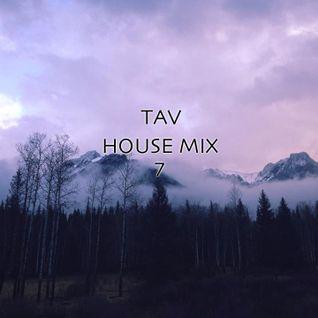 House Mix 7