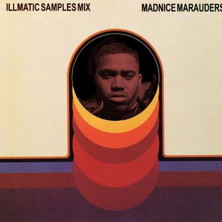 Illmatic 20 Year Anniversary Samples Mix by MADNICE Marauders
