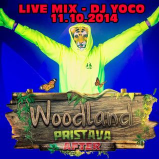 Dj Yoco - Live @ Woodland After Party (11.10.2014)