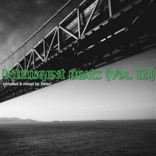 Intelligent beats (vol. 13)