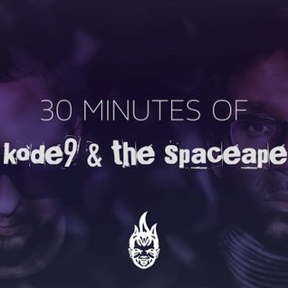 30 Minutes of Bass Education #11 - Kode9 & The Spaceape