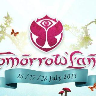 Otto Knows - Live @ Tomorrowland 2013 (Belgium) - 26.07.2013