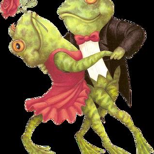 Dj Frogg - Fuck The Dancefloor 2
