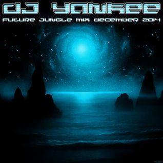 DJ Yankee Future Jungle December 2014 Mix for Future Jungle Blog