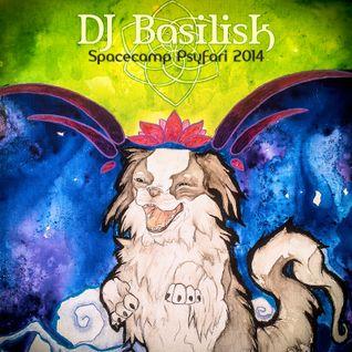 DJ Basilisk - Spacecamp Psyfari 2014